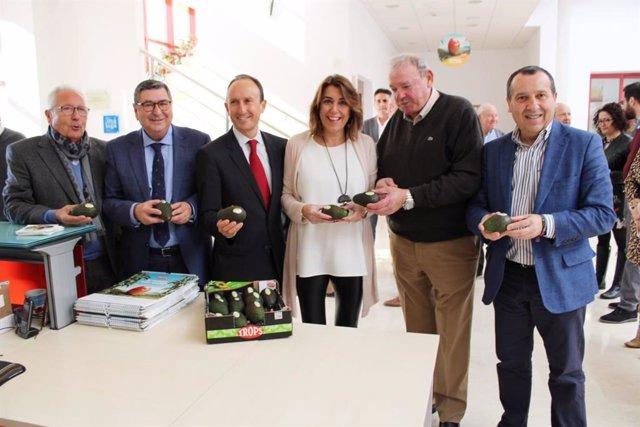La secretaria general del PSOE-A, Susana Díaz, en Vélez-Málaga