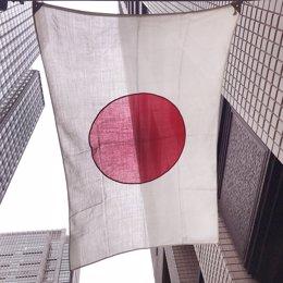 Japón.- El titular de Medio Ambiente se convierte en el primer ministro de Japón