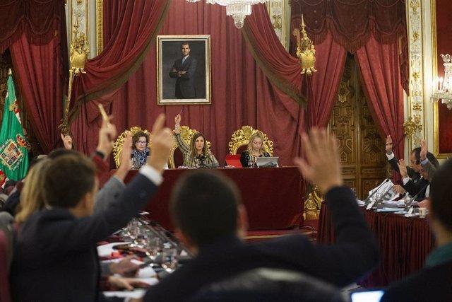 Pleno de Diputación de enero