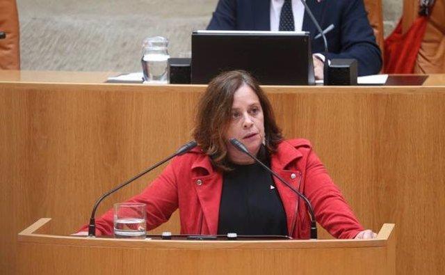 La diputada de IU y vicepresidenta del Parlamento de La Rioja, Henar Moreno