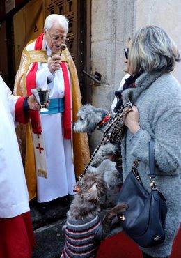 El padre Ángel bendine animales en la Iglesia de San Antón en Madrid