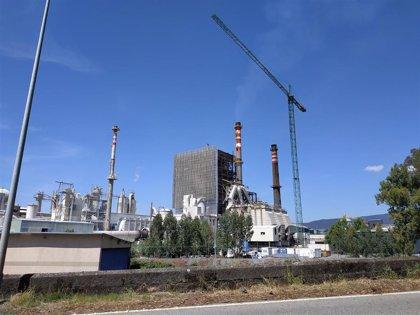 Ence se dispara un 6% en Bolsa tras cerrar la venta de toda su producción de celulosa de 2020
