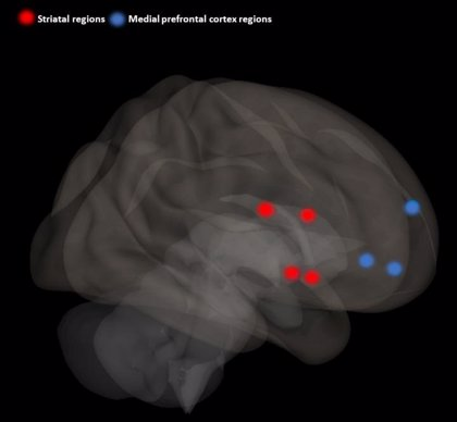 Los fármacos contra el TDAH también ayudan a mantener la concentración en los afectados, según un estudio
