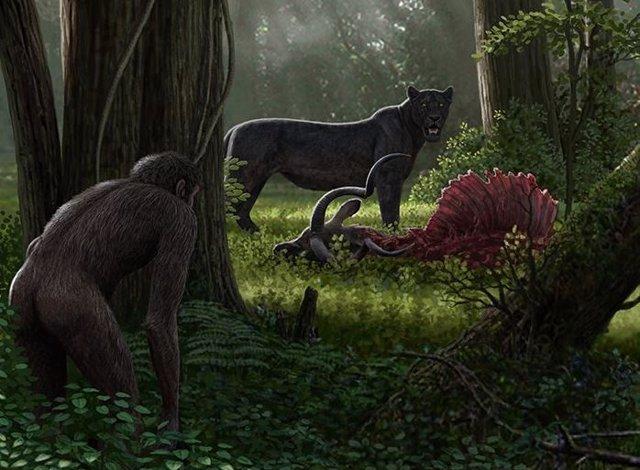 Las extinciones por la acción humana comenzaron hace millones de años