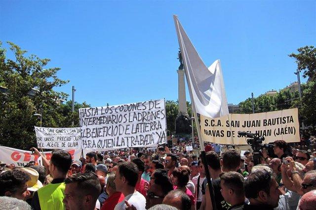 Concentración del 29 de mayo de 2019 en Jaén ante la crisis de precios del aceite de oliva/Archivo
