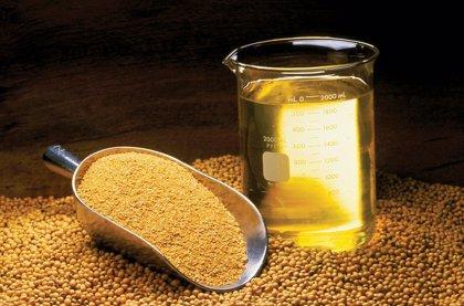 El aceite de soja causa cambios genéticos en el cerebro