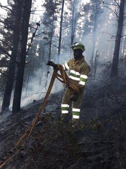 Efectivo del operativo de lucha contra los incendios