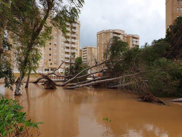 El temporal provoca daños materiales en Los Urrutias, Los Nietos, Playa Honda y La Manga (Cartagena)