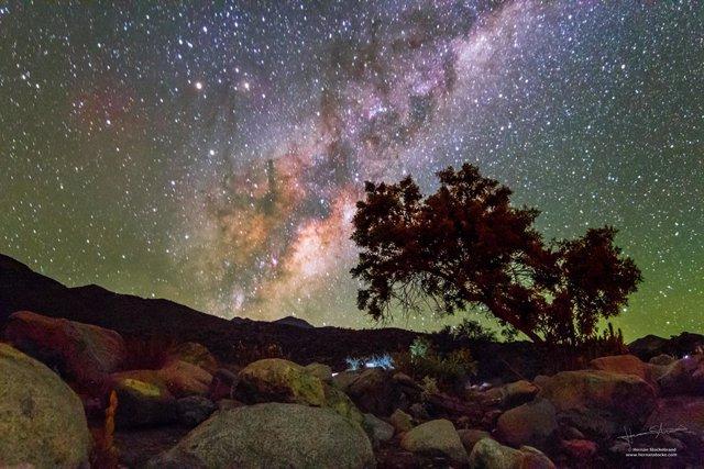 Chile presenta su campaña internacional de promoción turística en Fitur 2020
