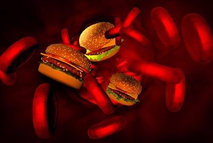 Las 5 preguntas más frecuentes sobre el colesterol