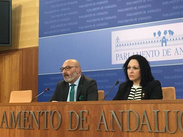 Alejandro Hernández y Luz Belinda Rodríguez, diputados de Vox en Andalucía, en una imagen de archivo.