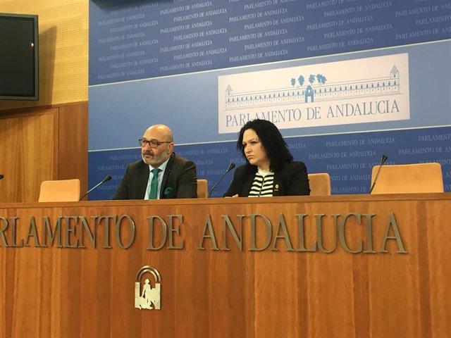 Los diputados de Vox Alejandro Hernández y Luz Belinda Rodríguez