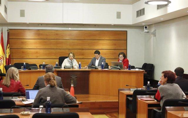 Comisión de Bienestar Social de las Cortes de C-LM