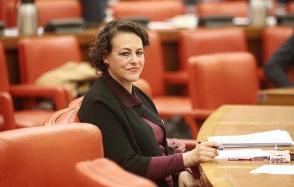 El PSOE incluye a sus exministros en la Diputación Permanente del Congreso