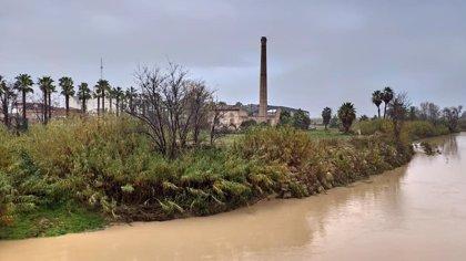 El caudal del Júcar baja en Alzira, que pide un plan de cuenca contra inundaciones