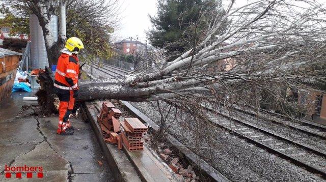 Un bomber atén una incidència d'un arbre caigut sobre la via del tren durant el temporal Gloria