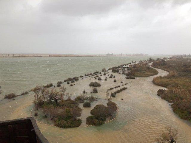Inundacions a la zona del delta de l'Ebre per la borrasca Gloria.