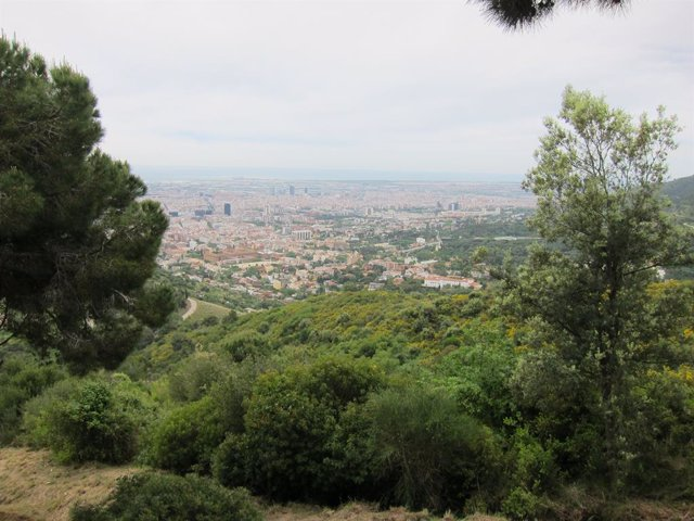 Parc de Collserola (Recurs)
