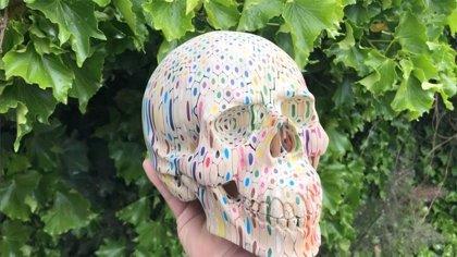 600 lápices de colores han hecho falta para crear esta escultura a escala real de un cráneo humano