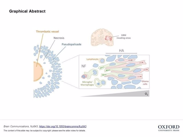 Gráfica de las células