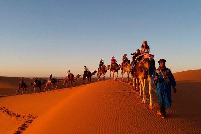 Paseo en camello por el desierto del Sáhara