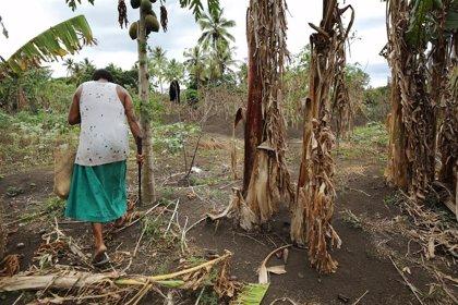 """ACNUR considera una """"decisión histórica"""" el dictamen del Comité de DDHH de la ONU sobre refugiados climáticos"""