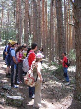 Ejecutivo regional reivindica la importancia de la concienciación medioambiental