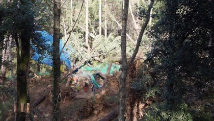Un parque de ocio dañado en el Montseny creará un espacio sobre cambio climático