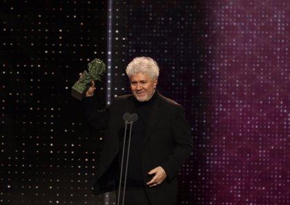 Pedro Almodóvar, Mejor Guión Original en los Premios Goya 2020 por 'Dolor y Gloria'