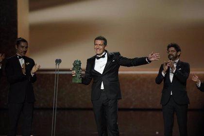 """Goya.- Banderas, Mejor actor protagonista, emocionado por """"este regalo"""": """"No solo estoy vivo sino que me siento vivo"""""""