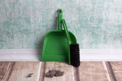 Alergia al polvo y a los ácaros, ¿es lo mismo?¿se puede evitar con limpieza?
