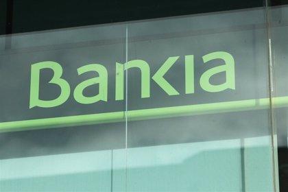 Bankia gana 541 millones en 2019, un 23% menos, y distribuirá 355 millones en dividendos