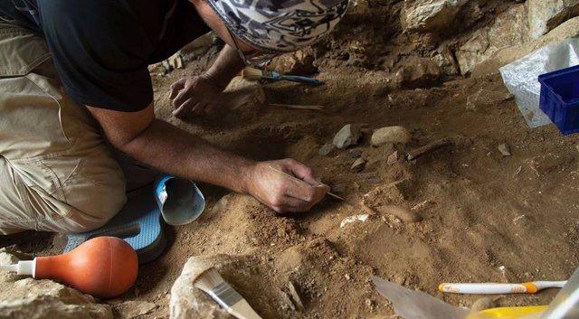 Excavaciones en la cueva de Chagyrskaya
