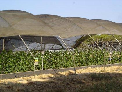 La Junta otorga la autorización ambiental unificada a la Comunidad del Condado para aguas subterráneas