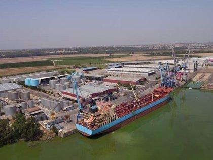 Puertos.- Sevitrade pide al Puerto 11.895 metros cuadrados más para una nueva nave de almacenamiento