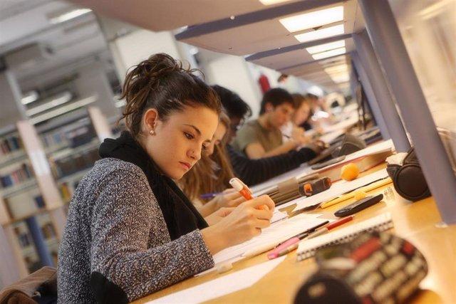 Estudiantes de la Universidad Pública de Navarra, en una biblioteca del centro.