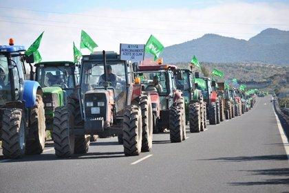 """Agricultura.- Asaja inicia este miércoles en Almería movilizaciones por el futuro del campo y reclamar al Gobierno """"soluciones"""""""