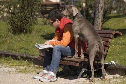 Ayuntamiento controlará que los dueños de animales de compañía cumplen normas de limpieza y tenencia