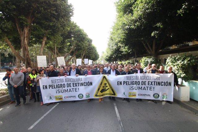 Almería.-Agricultores y comercializadoras realizan este miércoles una doble mani
