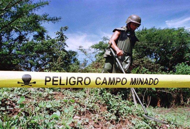 Camboya.- Camboya registra un aumento del 33 por ciento de las víctimas por las