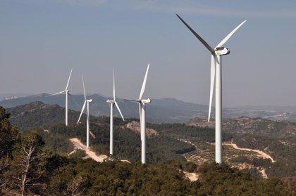 Elecnor construirá un parque eólico en Lanzarote por 11 millones
