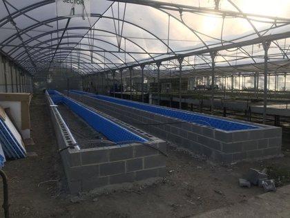 Finaliza la construcción del secadero de plantas del parque de Aranzadi, que entrará en funcionamiento en breve