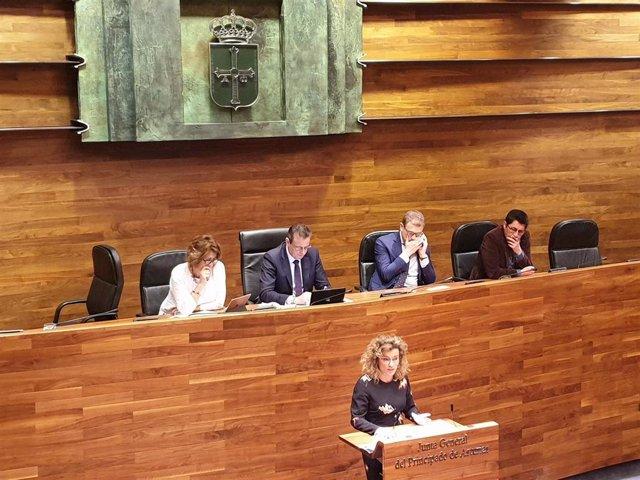 La diputada de Ciudadanos en la Junta General, Susana Fernández