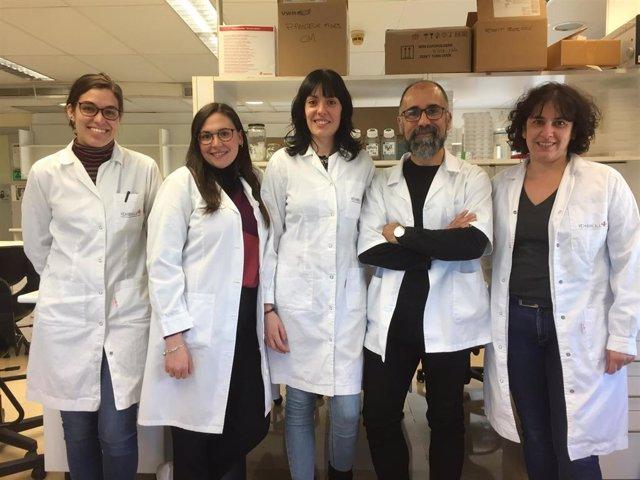 Investigadores del Idibell sobre cáncer infantil