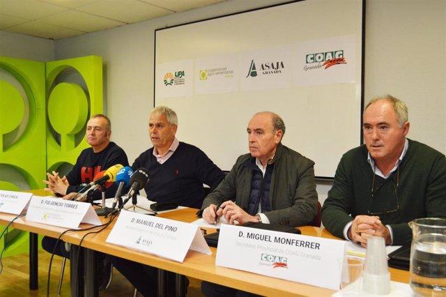Rueda de prensa de Cooperativas, Asaja, Coag y UPA en sede provincial de Federación Faeca