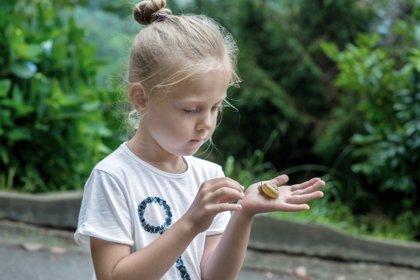Experimentos en el jardín: ideas para acercar el medio ambiente a los niños