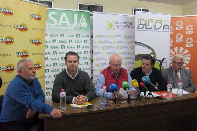 Rueda de prensa de las organizaciones agrarias  en Jaén.