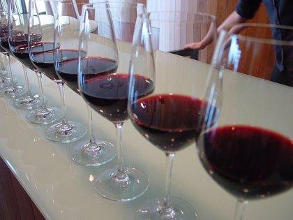 """La asociación Grupo Rioja considera """"inviable legalmente y sin apoyo real"""" la creación de la marca 'Viñedos de Álava'"""