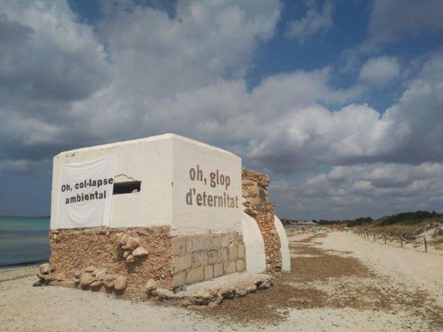 Acción del GOB en la playa de Es Trenc.