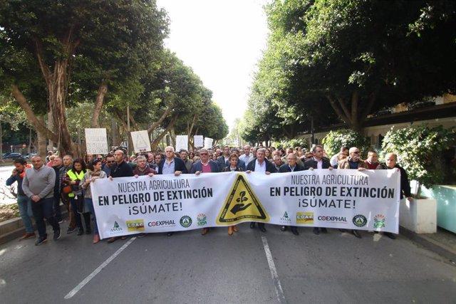 Manifestación del sector agrícola de Almería el 19 de noviembre por la crisis de precios en el campo